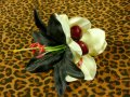 Vivien of Holloway Black White Hair Clip Cherry