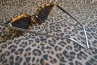 他の写真2: ☆Collectif☆SUZIE Q SUNGLASSES Tortoiseshell